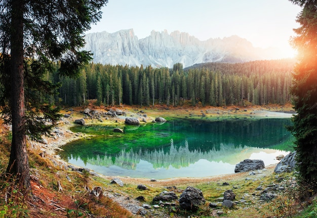 Outstanding background. autumn landscape with clear lake, fir forest and majestic mountains