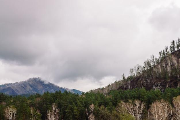 霧の丘と曇りの山の風景。美しい山の上の霧。アルタイの雨天。 Premium写真