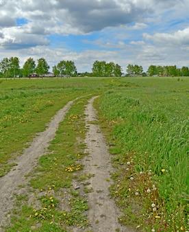 わだち掘れ、青い空、背景に家々が生い茂った畑。