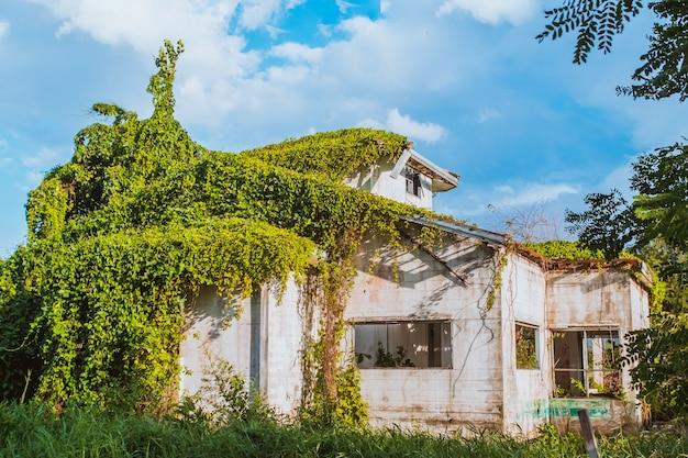 Разросшийся плющ на старом заброшенном доме. крытый коттедж «плющ»