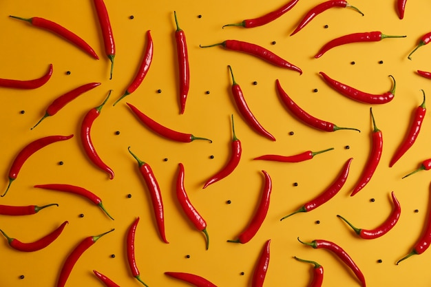 Overhead shot of long thin ripe red chili pepper and black peppercorns arranged around yellow studio wall. food background. set of peppers. variety of spices. vegetables and nutrition concept