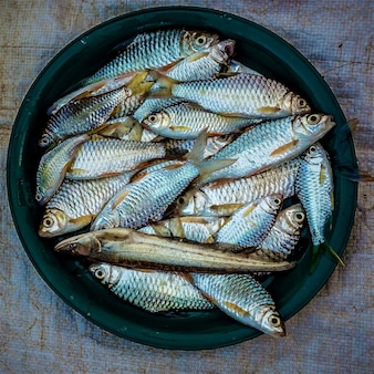 Overhead shot of sardines placed on a dark green plate