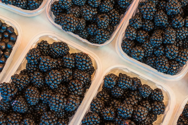 An overhead view of black berries in plastic transparent crates on white background
