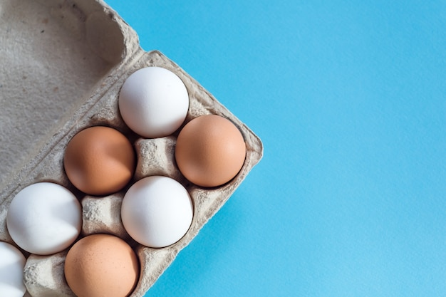 Overhead view of brown and white chicken eggs in an open egg carton isolated on light blue