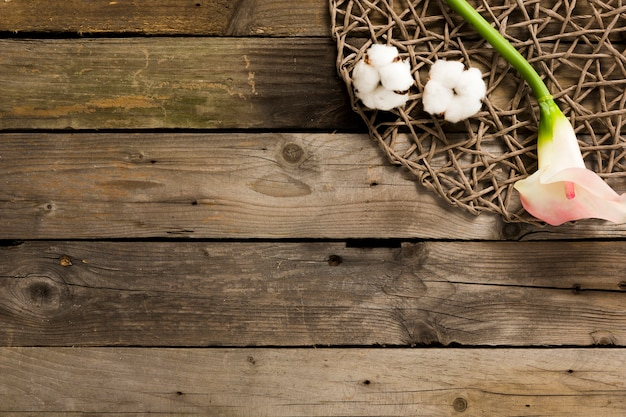 Overhead view of cotton with flower on wooden table