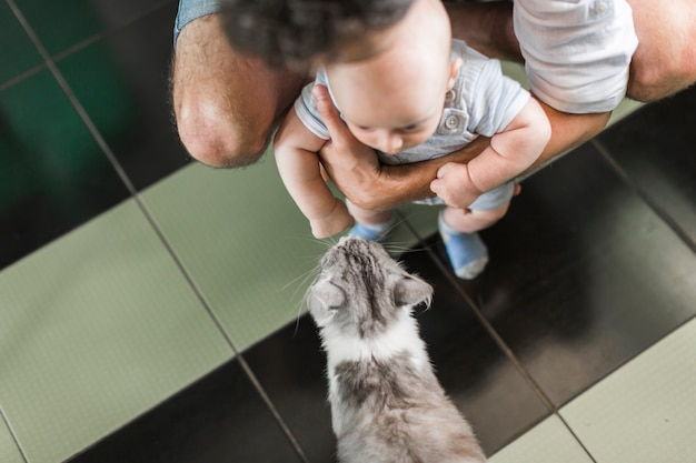 An overhead view of father holding his baby in front of cat