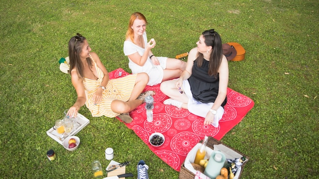 An overhead view of female friends enjoying at picnic