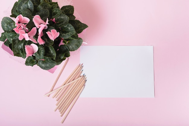 An overhead view of flower bouquet with colored pencils and white blank paper on pink background