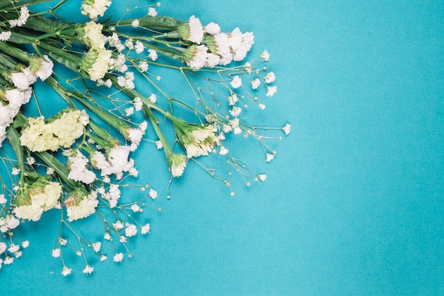 An overhead view of fresh white limonium and gypsophila flowers on blue background