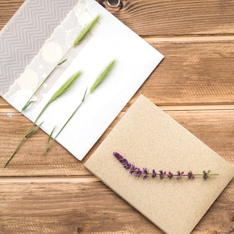 Overhead view of green ears of wheat on greeting card and lavender twig on table