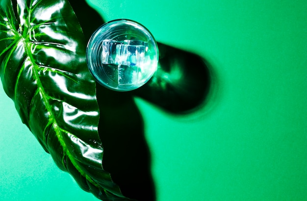 An overhead view of green leaf and glass with ice cubes on green background