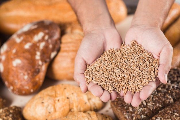 Overhead view of hands holding wheat grains over the baked bread