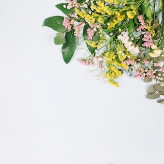 An overhead view of limonium and yellow goldenrods or solidago gigantea flowers isolated on white background