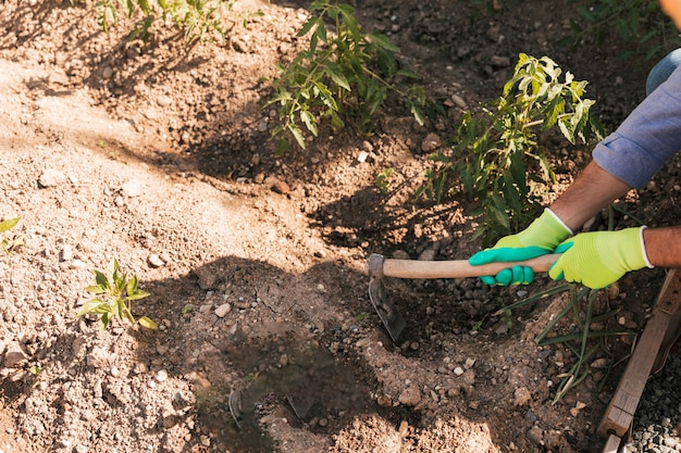 An overhead view of male gardener digging the soil with hoe
