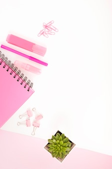 Overhead view of pink stationeries and potted plant on white cardboard paper