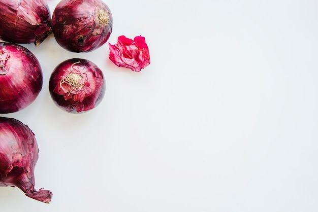 Overhead view of onions against white background