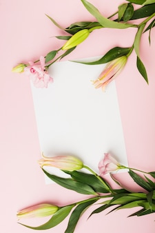 Overhead view of pink lily buds on white paper over the pink background