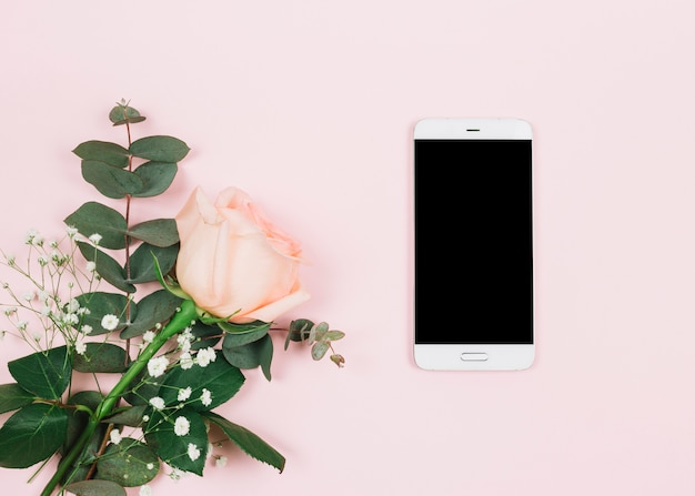 An overhead view of rose flower and gypsophila near the cellphone on pink surface