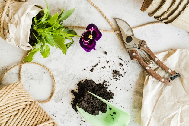 An overhead view of wrapped pansy flower pot; rope; soil and secateurs on concrete background