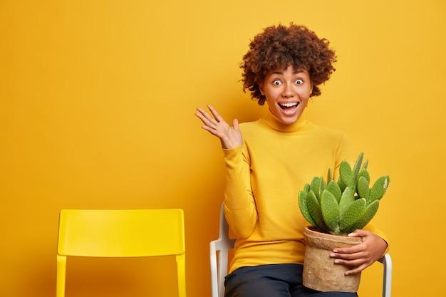 Felicissima donna dalla pelle scura eccitata alza i palmi ed esclama felice tiene il vaso di cactus indossa dolcevita giallo si siede su una sedia sente ottime notizie. concetto di emozioni e reazioni umane.