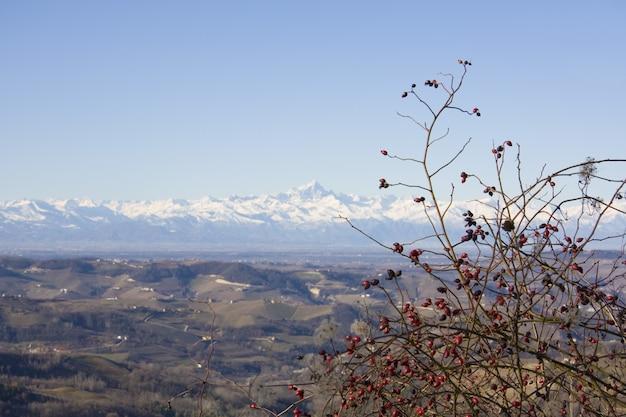 백그라운드에서 눈으로 덮여 산맥과 갈색 언덕의 전망을 내려다