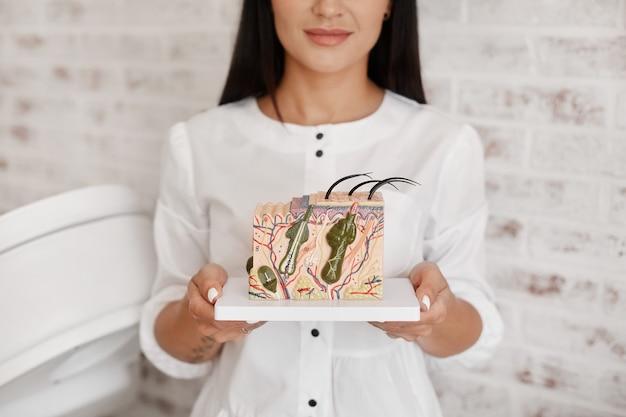 若い女性の皮膚科医の手に毛包がある特大の皮膚モデル。人間の皮膚の断面のプラモデルを持って見せている皮膚科医または毛髪学者