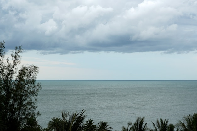Overview of the coast looking trees sea and nimbus clouds in the sky