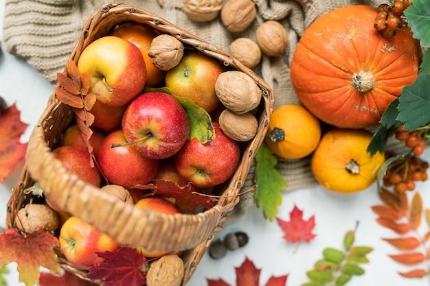 Обзор корзины с красными спелыми яблоками, грецкими орехами, тыквами и осенними листьями клена и рябины