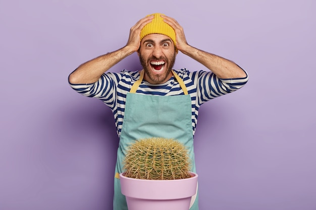 Overwhelmed frustrated male florist keeps hands on head and stares with annoyed expression, screams emotionally, needs to transplant cactus in other pot, has panicking expression, wears workwear