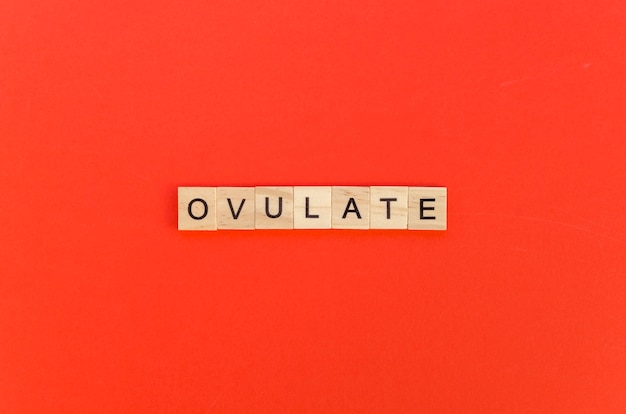 Ovulate word with scrabble letters on red background