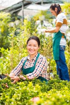 Owner of garden