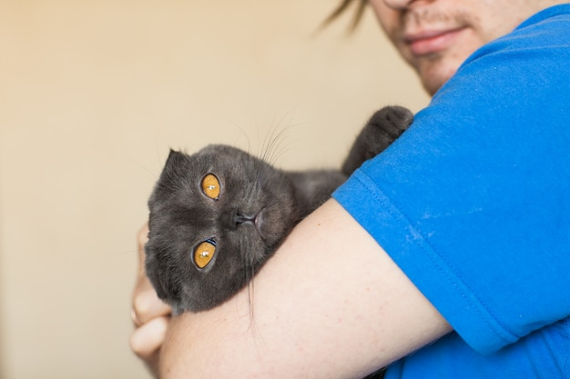 Owner and pet concept - young man holding a grey scottish fold cat