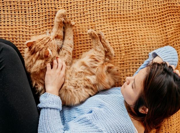 Owner petting adorable cat