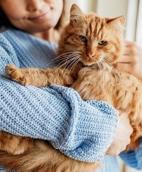 Владелец гладит очаровательную кошку