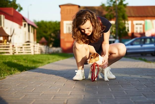 Владелец выгуливает собаку джек-рассел-терьера