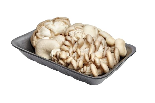 白い背景で隔離の灰色のトレイのヒラタケ。未調理の食用キノコ