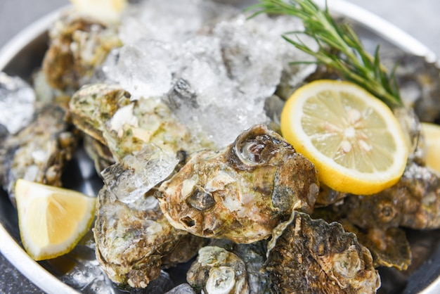 Oyster shell with herb spices lemon rosemary served table and ice healthy sea food raw oyster dinner in the restaurant gourmet food - fresh oysters seafood on plate black background
