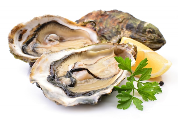 Oysters with lemon isolated
