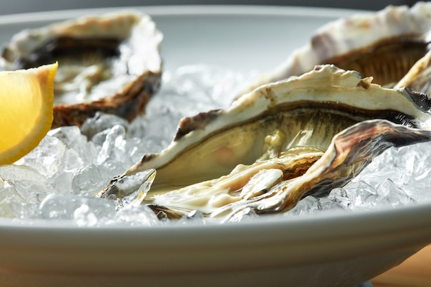 Oysters with lemon on plate ready for use