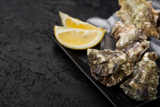 Oysters with lemon slices on plate