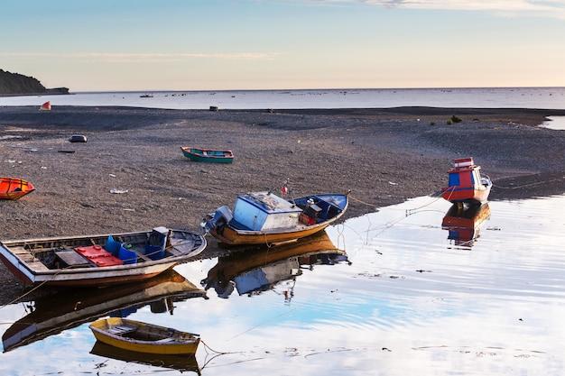 チリ、パタゴニア、カレテラオーストラル沿いの太平洋沿岸
