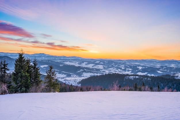구름이없는 일몰과 푸른 하늘을 배경으로 가문비 나무 숲과 snowdrifts가있는 산 계곡의 평화로운 풍경