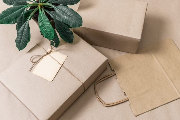 Упакованные коробки и хозяйственная сумка на сером фоне с зеленым растением, вид сверху.