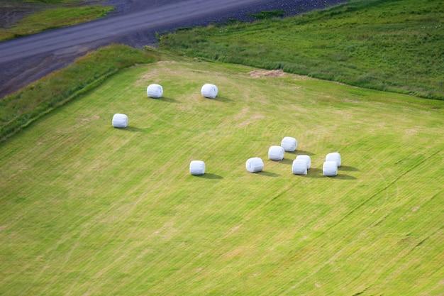 Упакованы в белые тюки, собранные травы на поле исландии