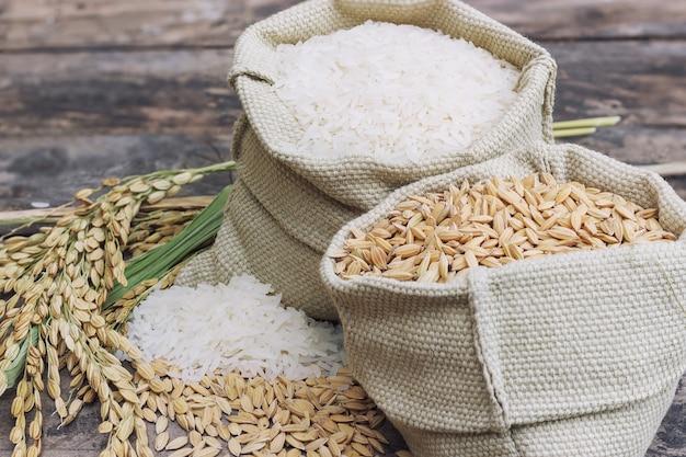 쌀과 쌀을 pad 지 않은 논 쌀과 농지의 밭을 spike니다.