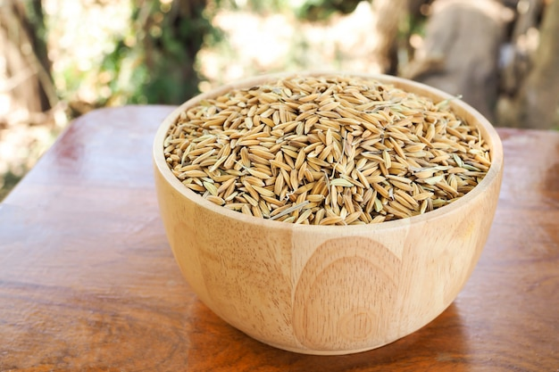 Paddy seed rice in wooden bowls on brown wooden table