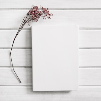 Page next to flower