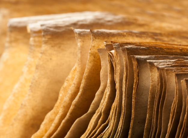 열린 고대 책의 페이지입니다. 클로즈업 보기