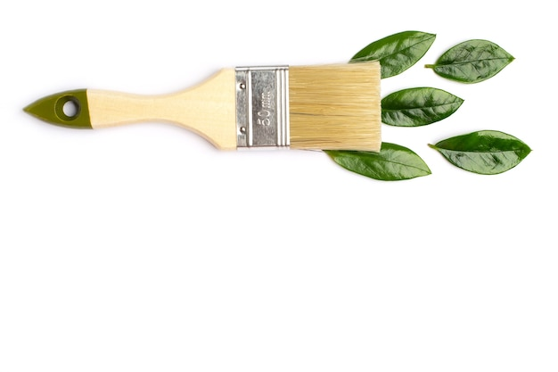 Paint brush with green leaves on white