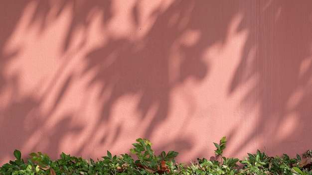 Окрашенная кирпичная стена с зеленым кустом на естественном светлом фоне